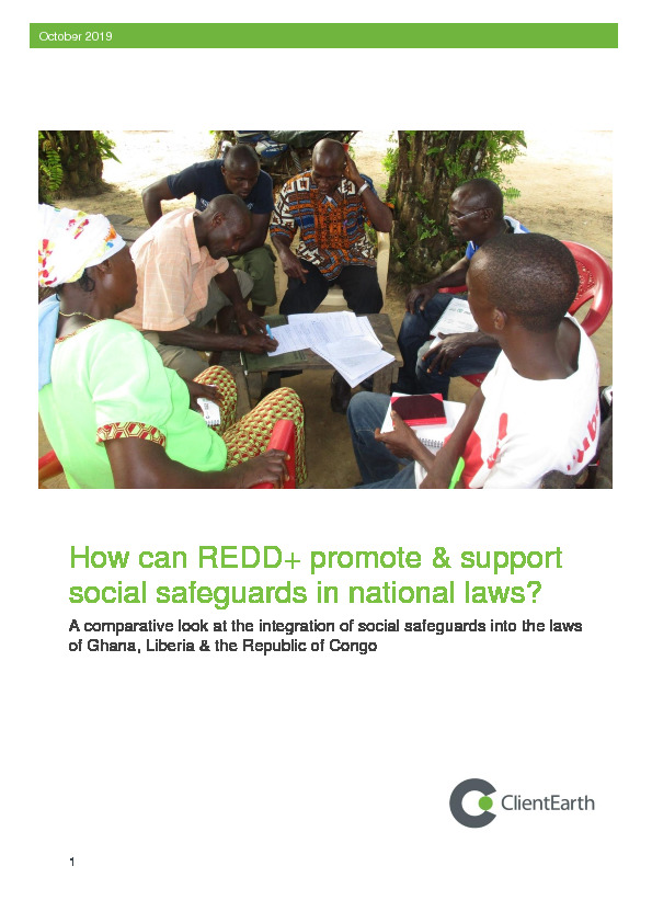 How can REDD+ promote and support social safeguards in national laws?