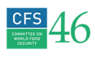 Committee on World Food Security (CFS 46)