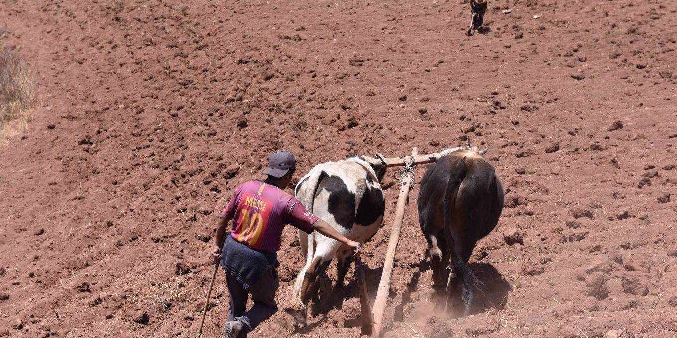 Strengthening Land Rights Will Curb Migration