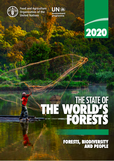 The State of the World's Forests 2020. Forests, biodiversity and people.