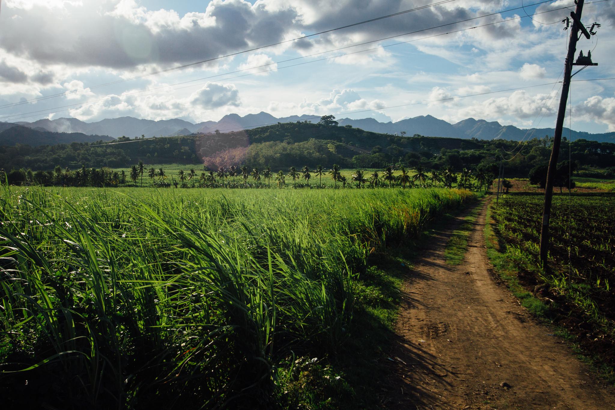 philippines farmland