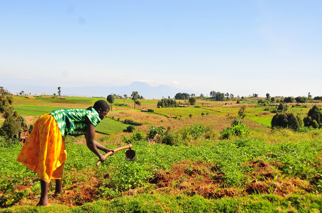 Uganda land environment Mountain Partnership