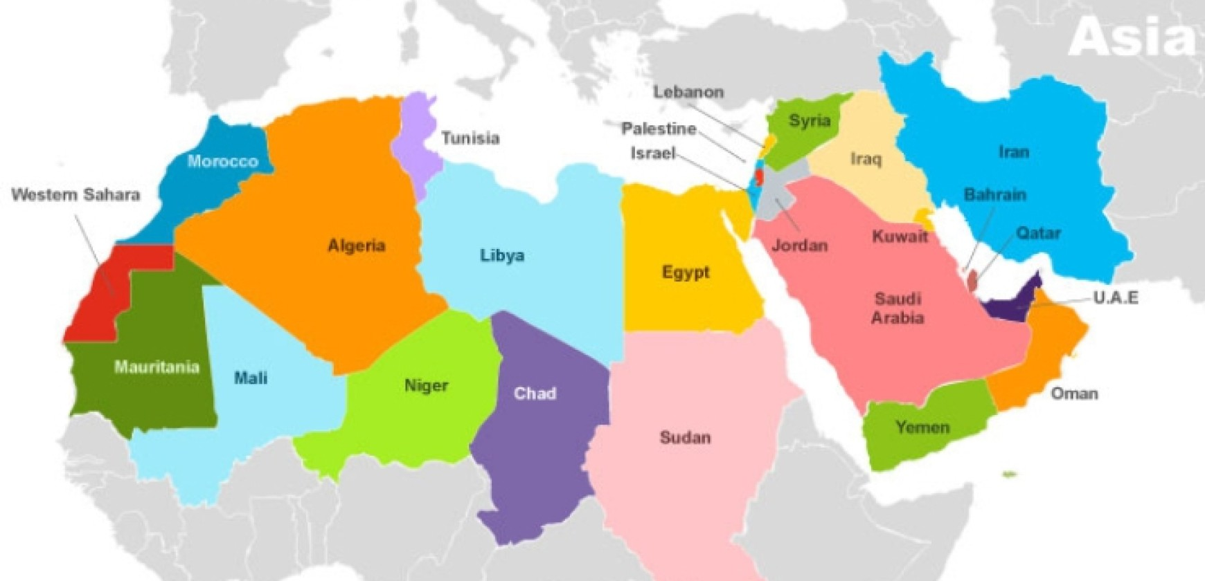 Middle East and North Africa (MENA)