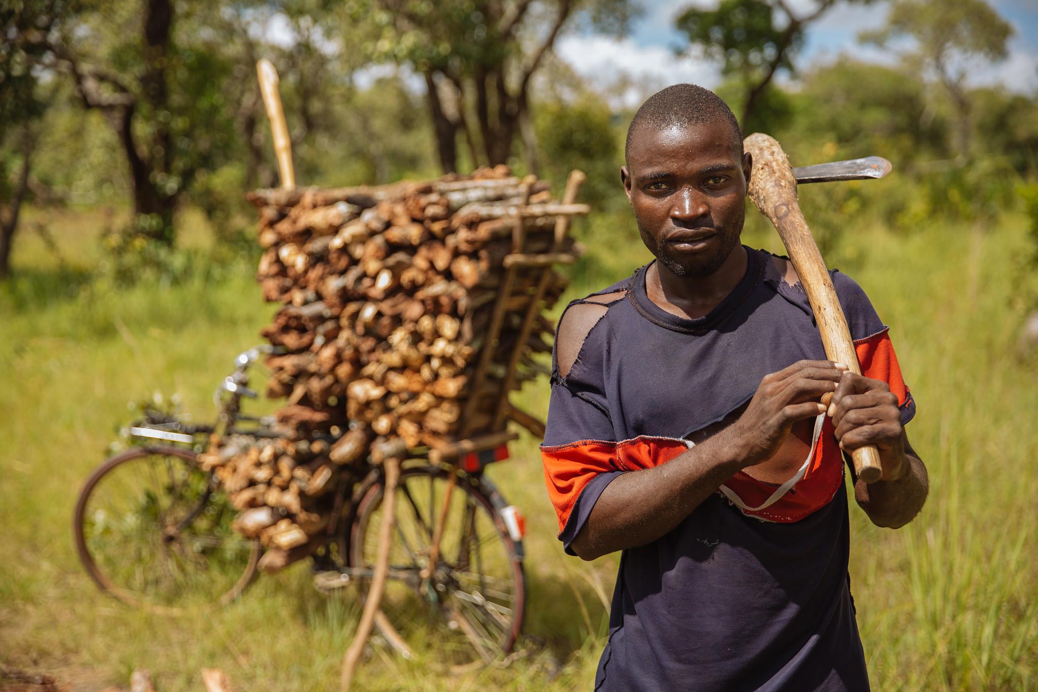 Dzalanyam Forest IFPRI CC BY-NC-ND 2.0
