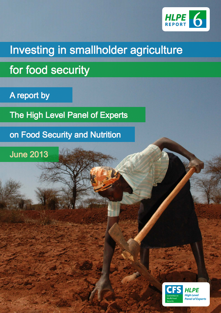 Investing in Smallholder Agriculture for Food Security cover image