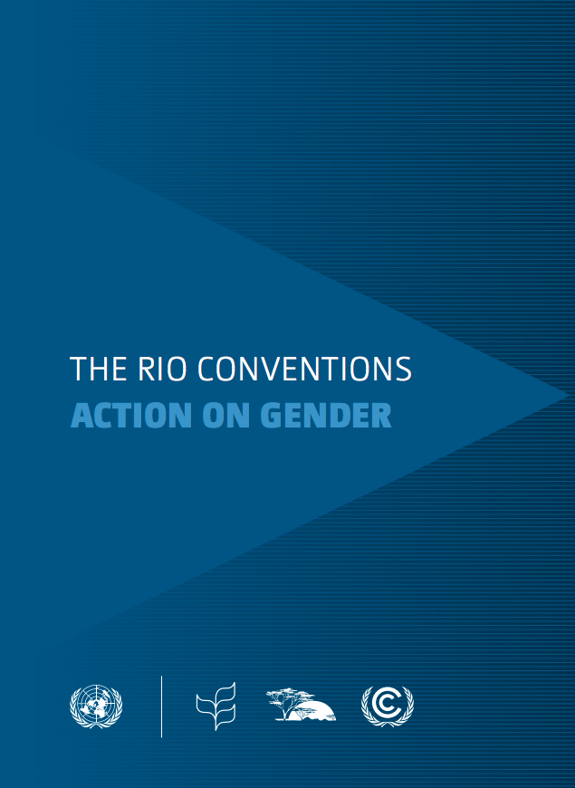 The Rio Conventions: Action on Gender cover image