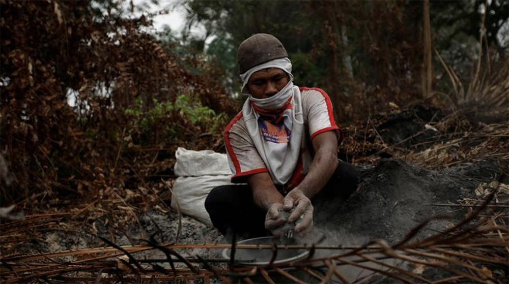 Five mega-trends affecting forests will have profound impacts on local communities