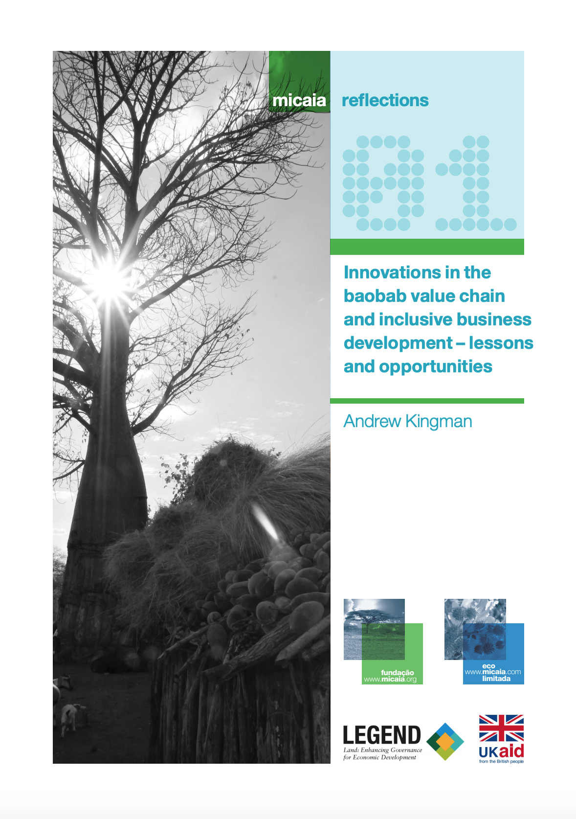 Innovations in the baobab value chain and inclusive business development – lessons and opportunities cover image