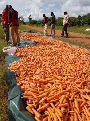 Produce on the border between Mozambique and Malawi