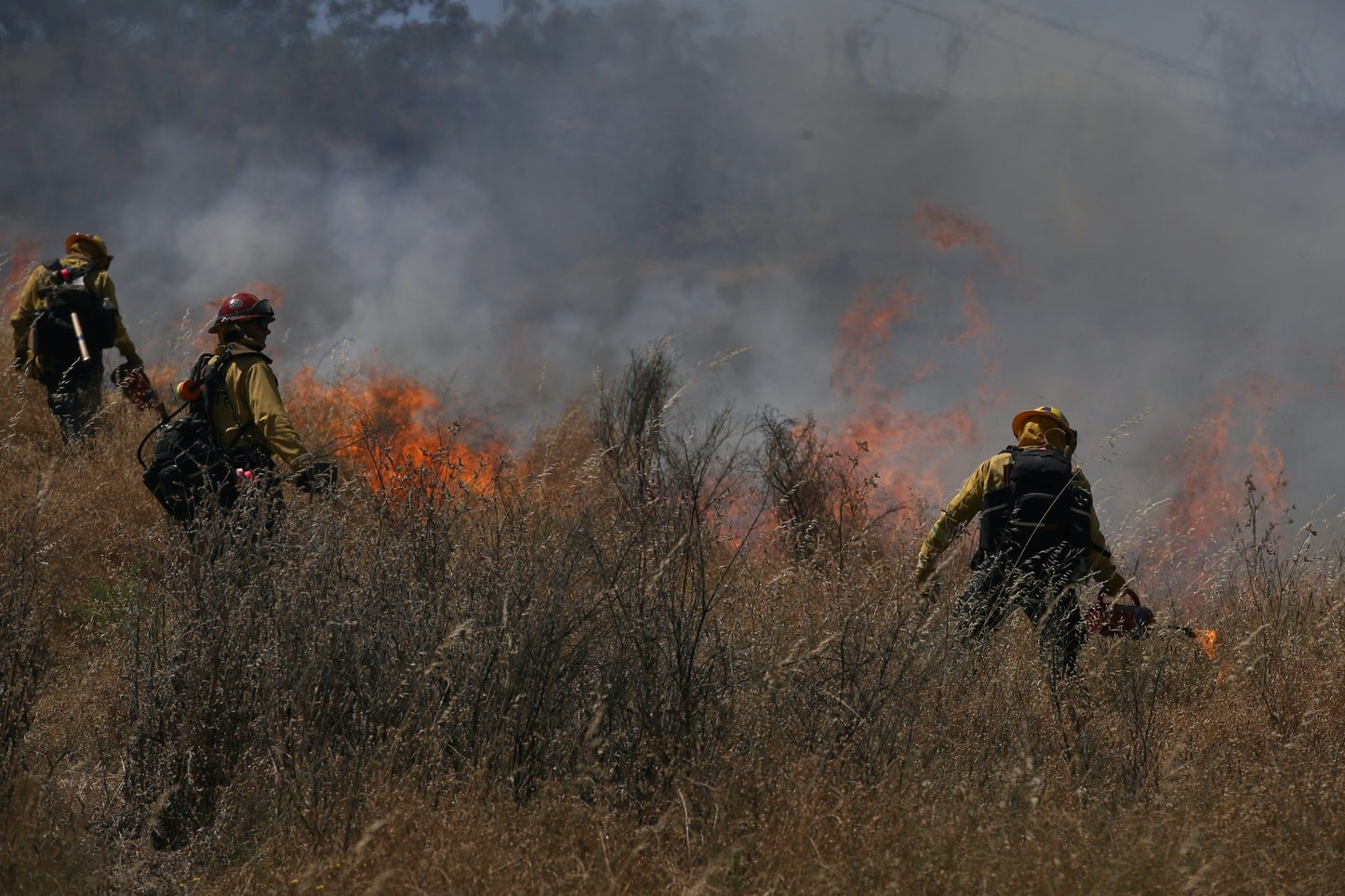 Firefighters participate in controlled burn training—a long-practiced Indigenous method of wildfire