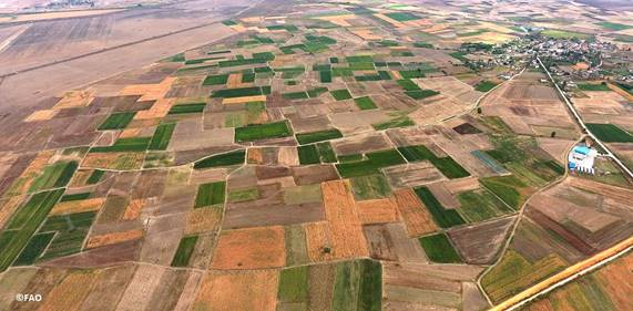 Application of land banking instruments in Europe and Central Asia