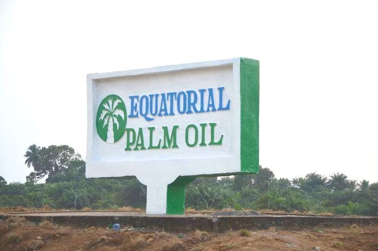 original_equatorial-palm-oil.jpg