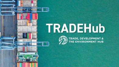 Trade, Development and the Environment Hub
