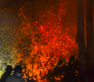 Peatland on fire again as burning season starts in Indonesia