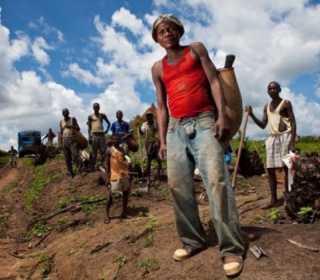 Workers at the oil palm plantations of Feronia Inc in Lokutu, DR Congo. The Canadian company received over $140 million from development banks. Image: Beeld Hollandse Hoogte(link is external) / Kris Pannecoucke