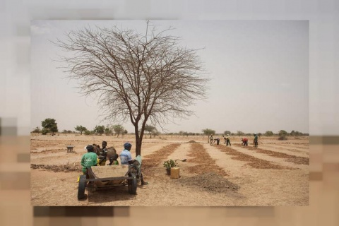 Ambitious $104 million program targets land degradation in Africa and Central Asian countries