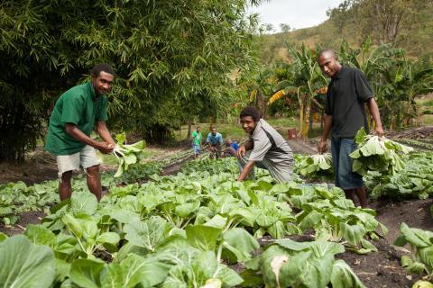 Guinea photo DFAT