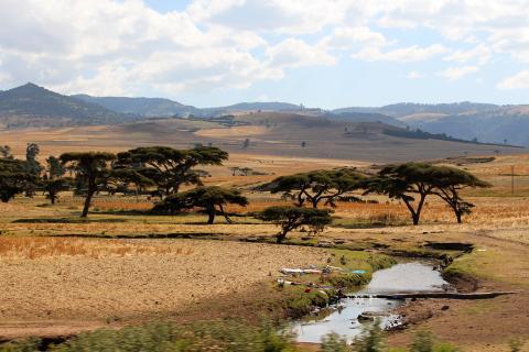 Tajikistan irrigation water land photo by Bioversity International