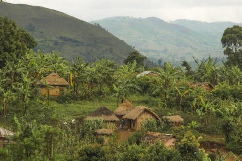 Pygmy Indigenous leader imprisoned on false charges for defending land rights against ''conservation''