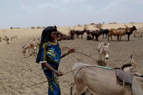 archive-Niger.jpg
