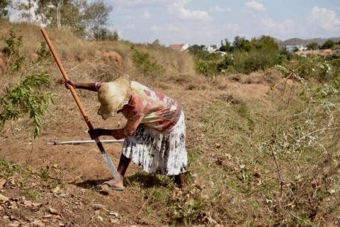 original_Paysanne_cMiaro_Madagascar.jpg