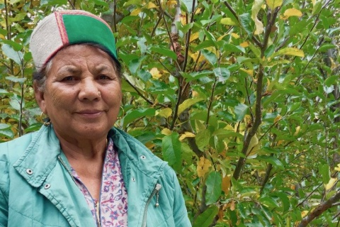 Why Rattan Manjari Fights for Tribal Women's Land Rights in Himachal Pradesh