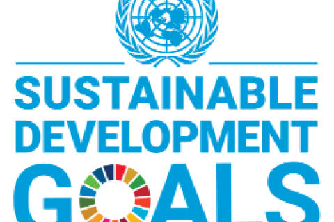 sdg_logo_with_un_emblem_250_0.png