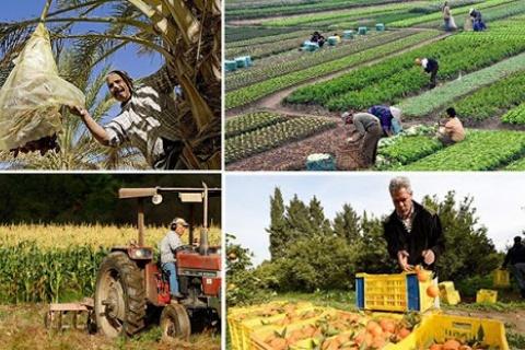 Quelle agriculture pour la tunisie après le covid-19