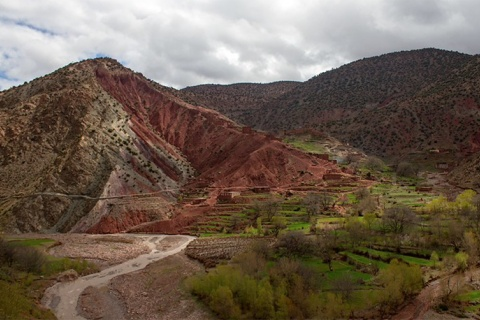 Terres agricoles. Crédit photo: Ziri Ouchen
