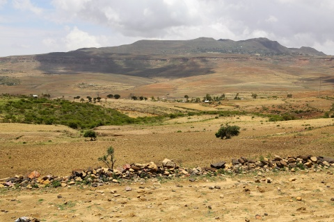 Land Governance in Ethiopia in the Time of COVID-19