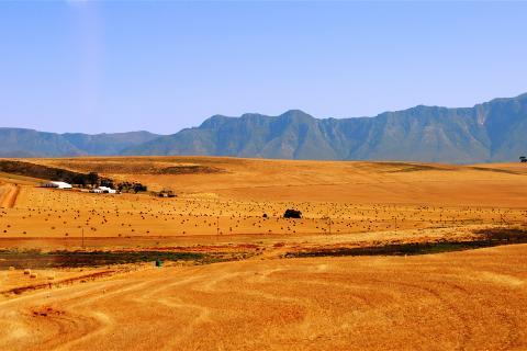 south africa farmland