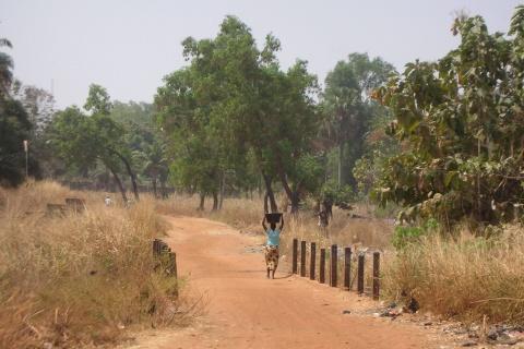 Le foncier au Togo
