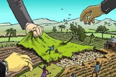 Accaparement des terres