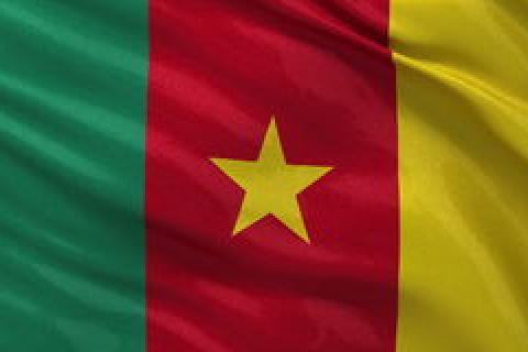 Cameroun drapeau.jpg
