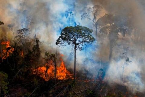 Foto: Carl de Souza/AFP/Getty Images