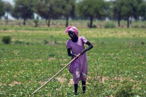 A girl farms the land during the rainy season outside Gereida, Sudan, July 25, 2012. (photo by REUTERS/Albert Gonzalez Farran/UNAMID)  Read more: http://www.al-monitor.com/pulse/ja/originals/2015/08/egypt-sudan-agriculture-irrigation-cooperation-blue-nile