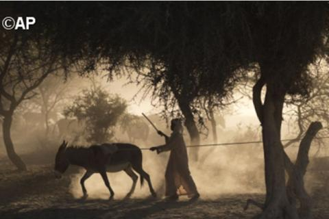 Dans le village de Louri, au Tchad, en nov 2012. - AP