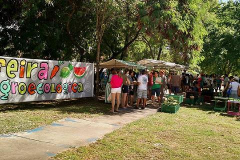 Pernambuco é um estado onde as feiras agroecológicas acontecem regularmente em várias cidades. / Portal Flores no Ar