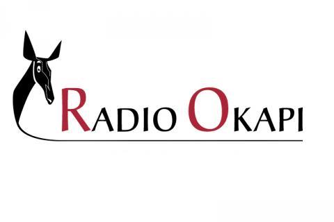 RADIO_OKAPI.jpg