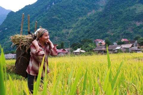 Land and food systems