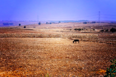 Moroccolandscape