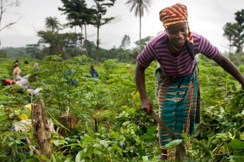 Despite reforms, patriarchal systems continue to hinder land ownership by African women