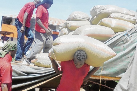 Porters carry sacks of maize at Nansio port in Ukerewe island.
