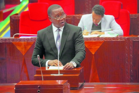 Agriculture minister Adolf Mkenda, outlined the priorities to parliament in the 2021/22 financial year.