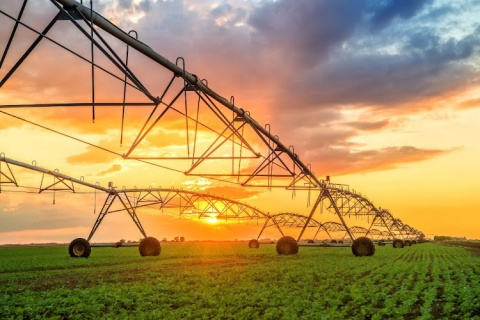 The controversial farm mechanisation programme's $200m debt is now being passed on to Zimbabwean taxpayers. Image: 123RF/ Igor Stevanovic