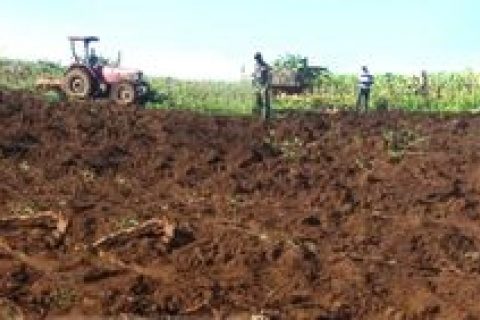 A tractor being guarded by the Ugandan army (UPDF) destroying food crops after the suspension of Witness Radio