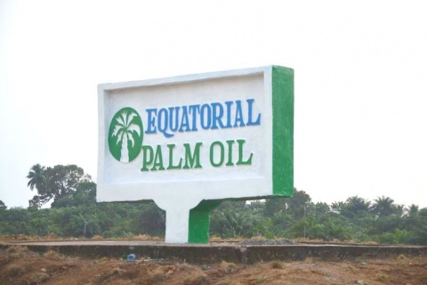 original_equatorial-palm-oil.jpg