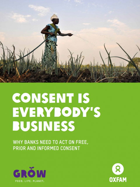 Consent is Everybody's Business: Why banks need to act on free, prior and informed consent