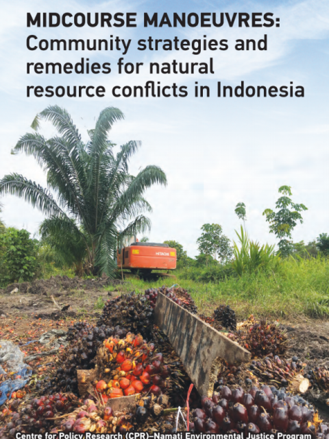 Cover photo of Midcourse Manoeuvres: Community Strategies and Remedies for Natural Resource Conflicts in Indonesia