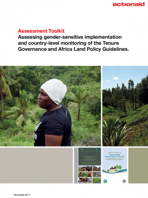 Assessment Toolkit: Assessing gender-sensitive implementation and country-level monitoring of the Tenure Governance and Africa Land Policy Guidelines cover image